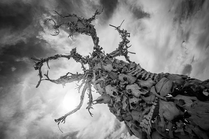 burning_man_photography_-6296