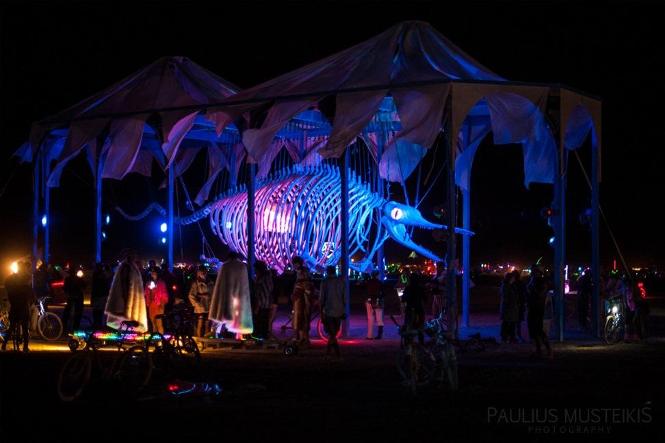 Lake_Lahontan_Retreat_and_Water_Show_Burning_Man_photography_Paulius_Musteikis_DSC_5778