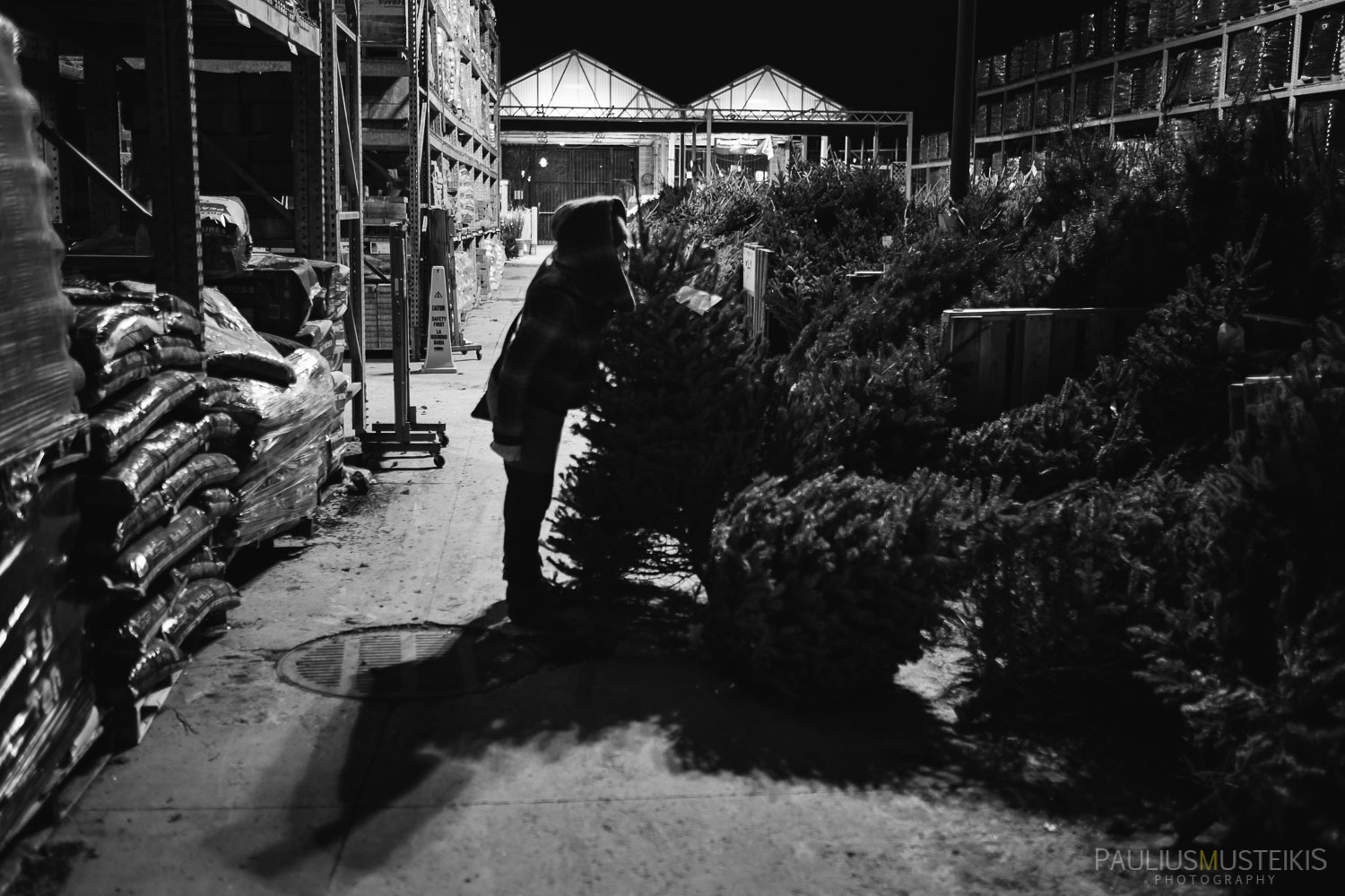christmas_tree_that_time_of_the_year_in_Madison_Paulius_Musteikis_Photography-1892