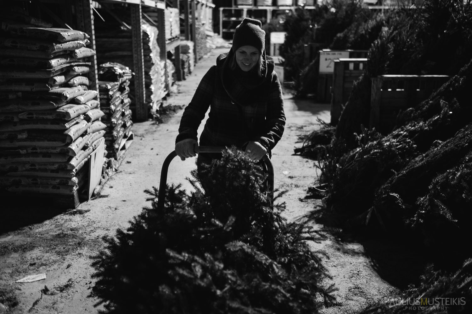 christmas_tree_that_time_of_the_year_in_Madison_Paulius_Musteikis_Photography-1904