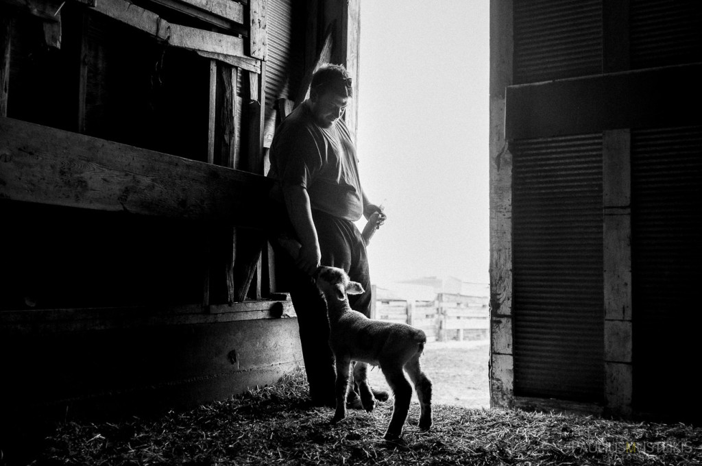 VTV_ranch_South_Dakota_ road_trip_with_fuji_x-pro1_x100_silver_efex_pro_Paulius_Musteikis_Photography-0094