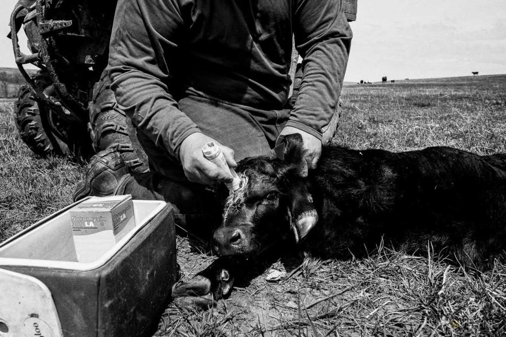 VTV_ranch_South_Dakota_ road_trip_with_fuji_x-pro1_x100_silver_efex_pro_Paulius_Musteikis_Photography-0118